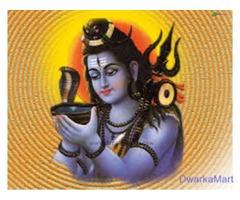 World famous Indian astrologer babaji+91-9872102923